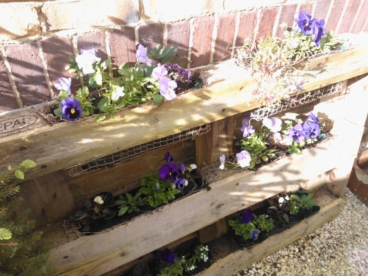 Recycling pallets in the garden