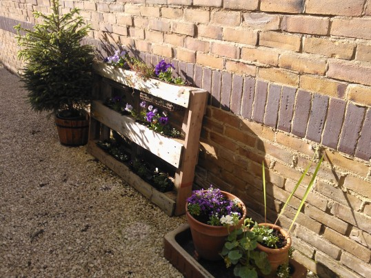Repurposed pallet as garden planter
