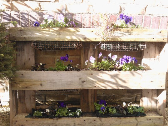 Pallet planter with flowers