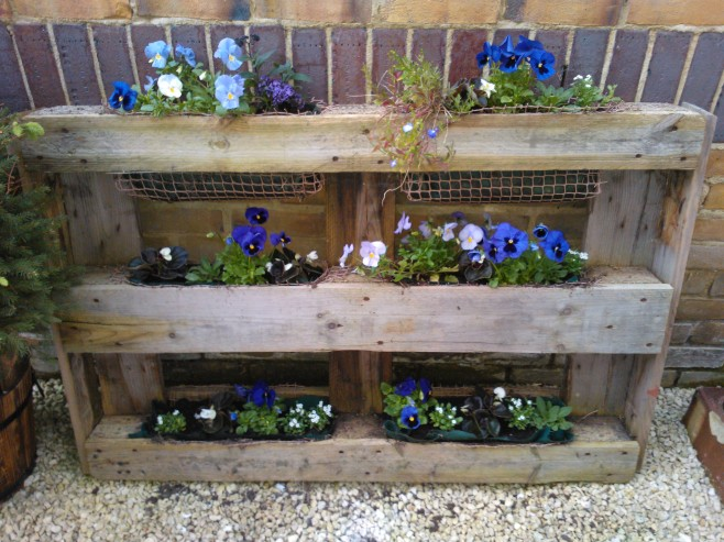 Blue and white flower garden in upcycled pallet